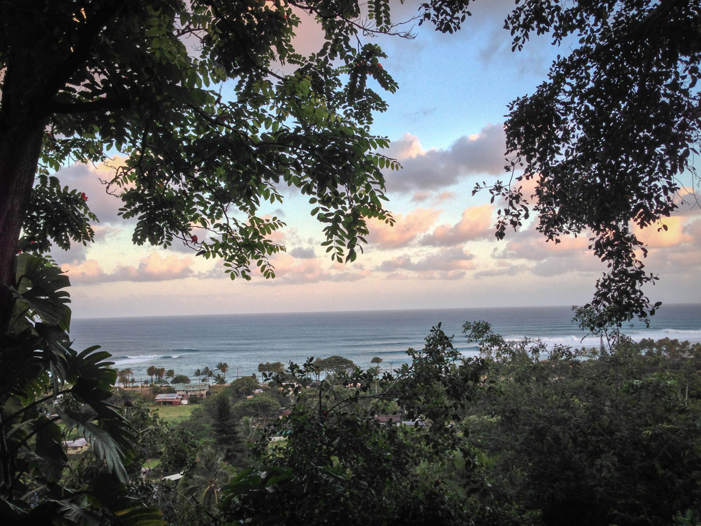 airbnb-rental-haleiwa-oahu