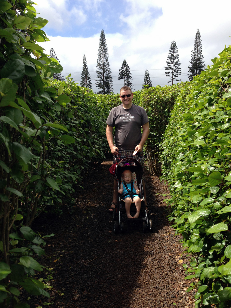 dole-plantation-tour-review-12.06.02