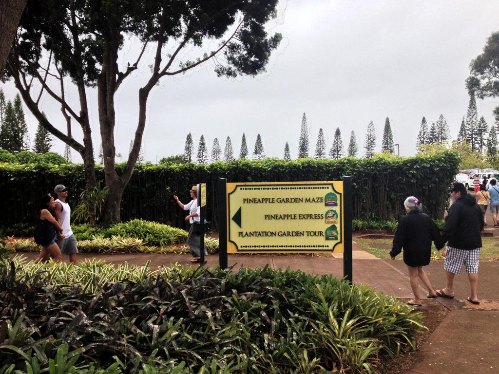 dole-plantation-tour-review-12.36.50 HDR