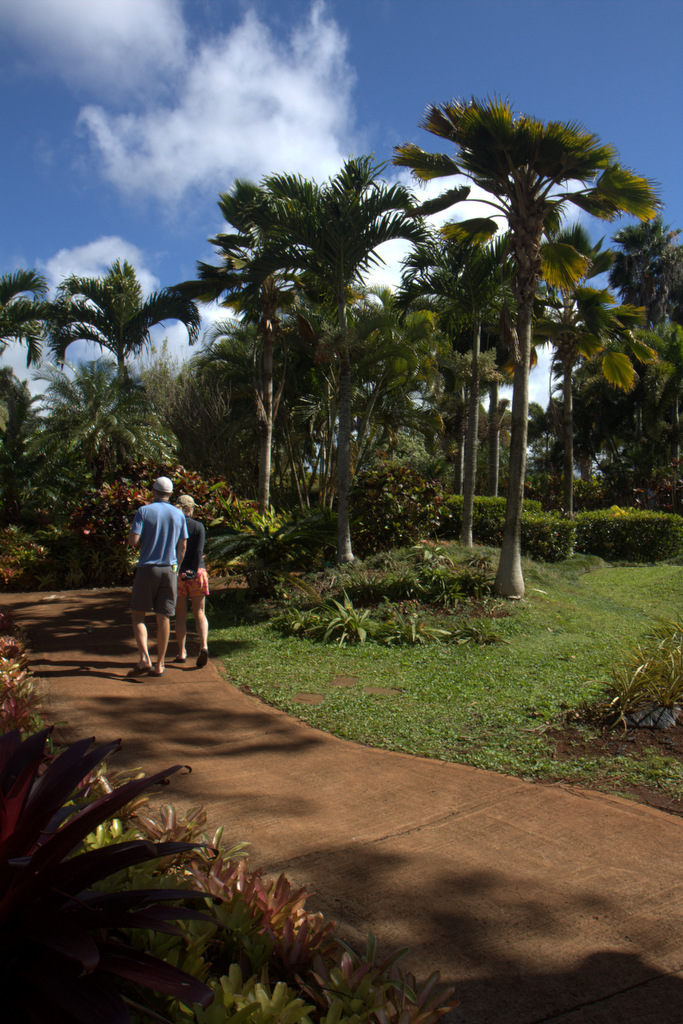 dole-plantation-tour-review-14.02.58