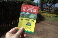 dole-plantation-tour-review-14.37.01