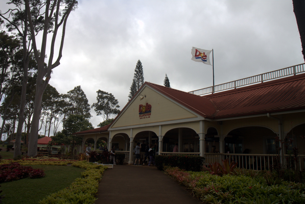 dole-plantation-tour-review-15.54.26